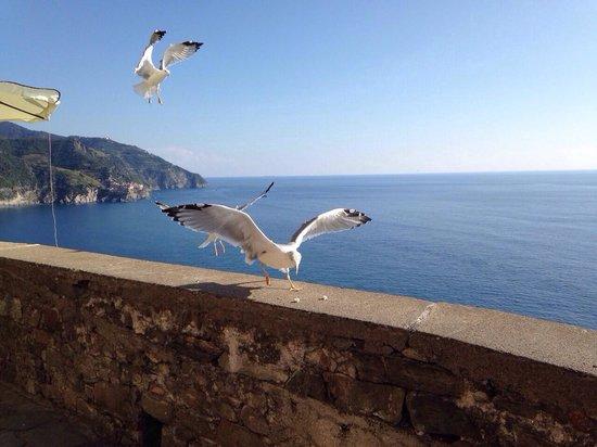 Terrace with tables - Picture of Bar La Terza Terra Corniglia ...