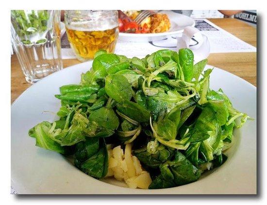 Der Steirer: Der schon fast Legendere Grüne Salat mit Steirischen Kürbiskernöl