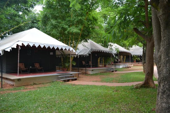 Olde Bangalore Hotel u0026 Resort Lots of Luxury Tents to stay with family : luxury tent hotel - memphite.com