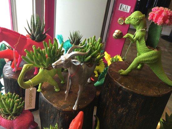 SoCo District: Funky Dino Planters