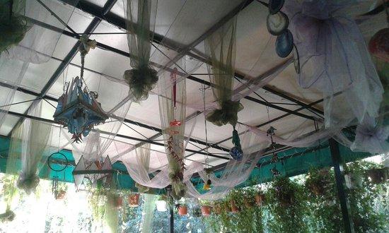 Trattoria Maria: UN AMBIENTE GRAZIOSO E INVITANTE