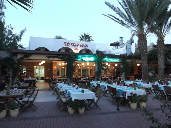 Toloman Hotel: Early evening before dinner..