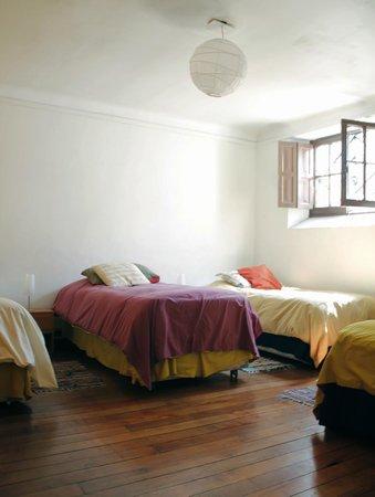Photo of Newen Kara Hostel Santiago