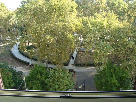 Hotel Orazia: Plaza de enfrente
