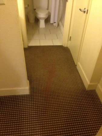 The Timbers Hotel: Blood?