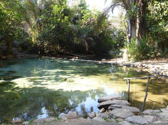 Kapishya Hot Springs Lodge : The hot springs