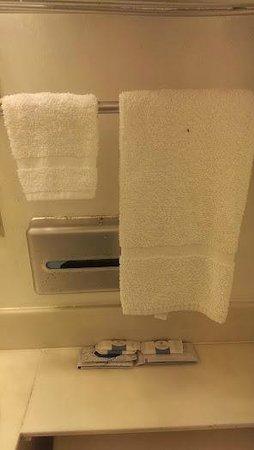 Van Ness Inn Hotel: Dirty towels, dirty toilets