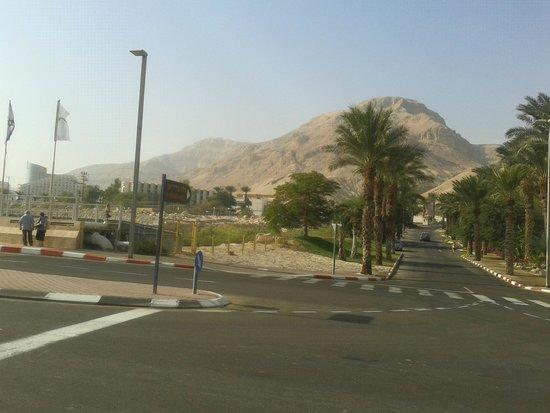 Leonardo Inn Hotel Dead Sea: местность
