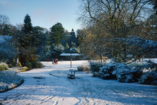 Valley Gardens: Magnesia Well cafe in the snow