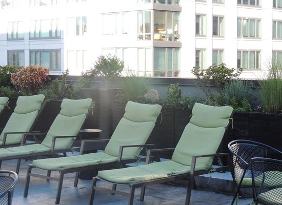 The Marcel at Gramercy : rooftop