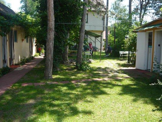 Youth Hostel Villa Benjamin: garden