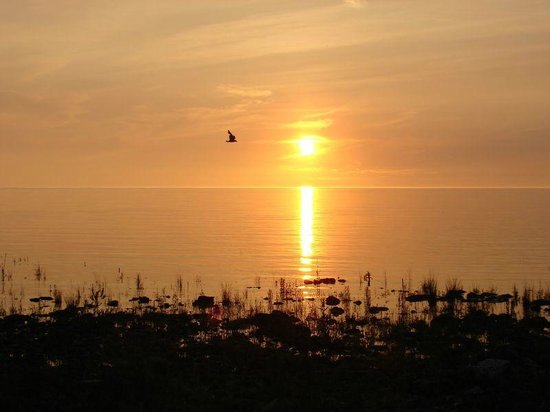 Inverhuron Provincial Park: Sunset, just steps away from our campsite