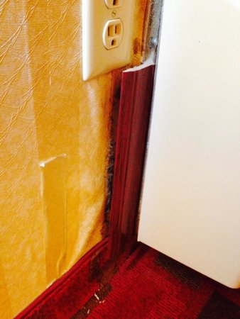 Quality Inn & Suites Kansas City I-70 East : Water damage and dust clumps in room