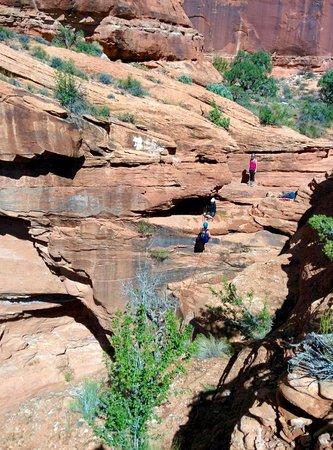 Moab Desert Adventures: Hidden Splendor Rappel