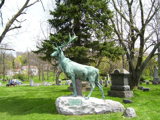 Oakwood Cemetery: My personal favorite