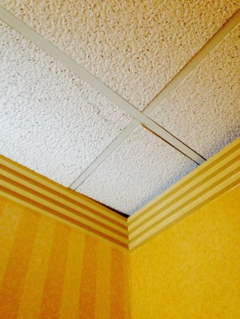 Quality Inn & Suites Kansas City I-70 East: Water damage and ceiling tile falling out of ceiling