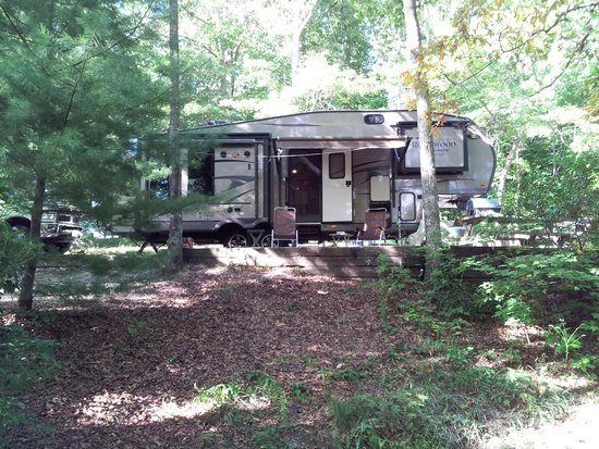 Ash Grove Mountain Cabins & Camping: Our site at Ash Grove