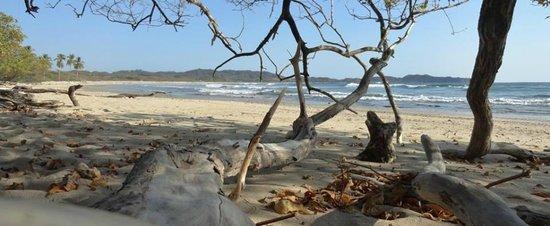 Nosara B&B Retreat: Pelada Beach