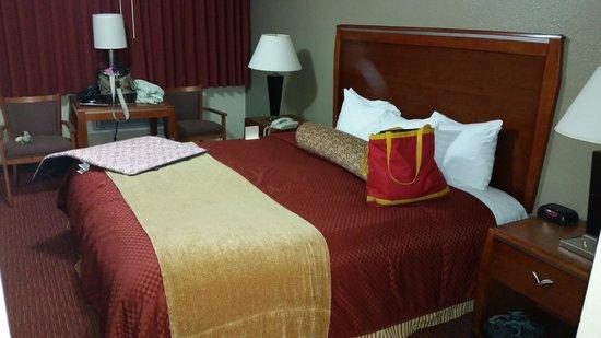 BEST WESTERN Tradewinds: bed