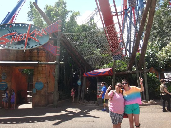 Seikra Picture Of Busch Gardens Tampa Tampa Tripadvisor