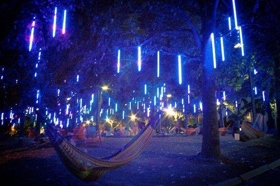 Penn's Landing: Tree Lights
