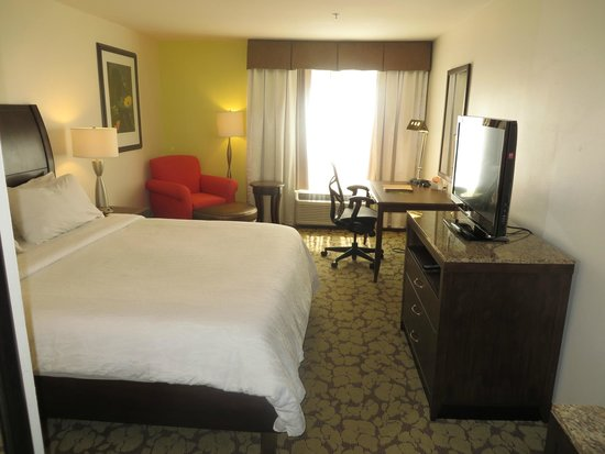 Hilton Garden Inn New Orleans Airport: Overview of room 240