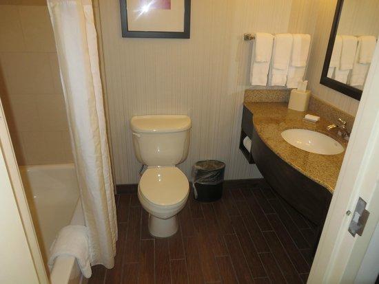 Hilton Garden Inn New Orleans Airport: Bathroom (room 240)