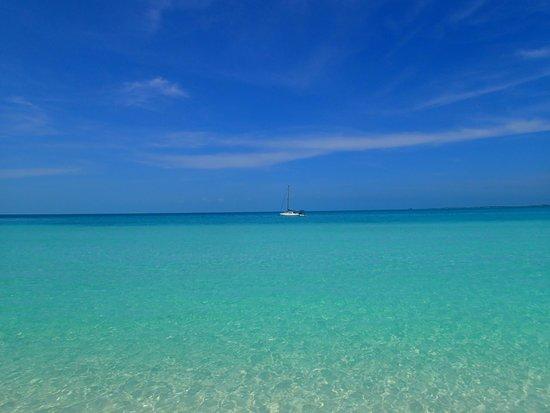 Sapodilla Bay: beautiful, clear water