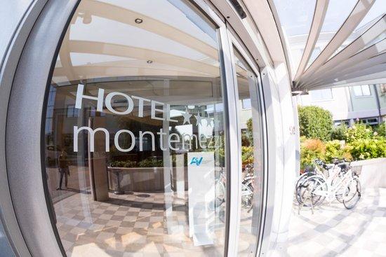 Vigasio, Italië: La porta dell'hotel