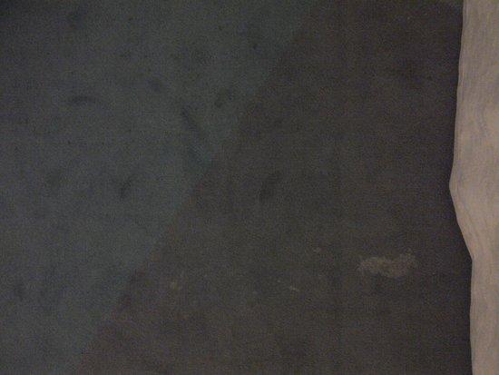 Hotel Hiberus: Carpet around the bed