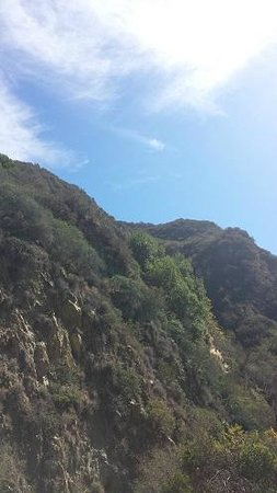 Santa Monica Mountains: A view looking up at the mountains from the road