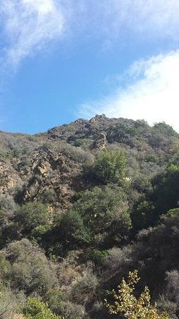 Santa Monica Mountains: Looking up at the mountainside