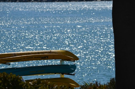 Dana Point, Califórnia: Canoes and stand up  paddle board