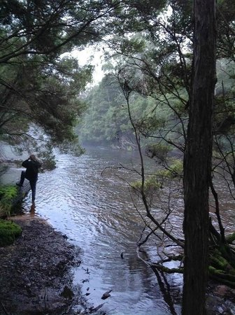Mountain Valley Wilderness Holidays : Platypus Search