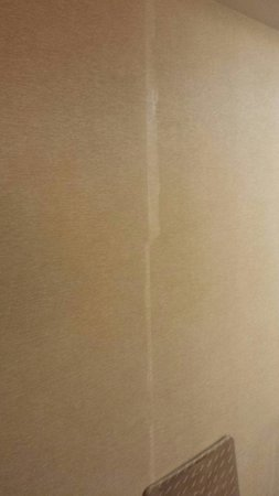 Radisson Hotel Harrisburg : Sloppy and dull old wall paper
