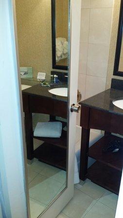 Radisson Hotel Harrisburg : Bathroom the size of a closet