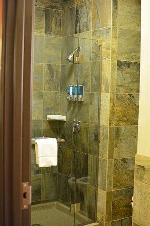 Drury Plaza Hotel in Santa Fe: beautiful, large shower