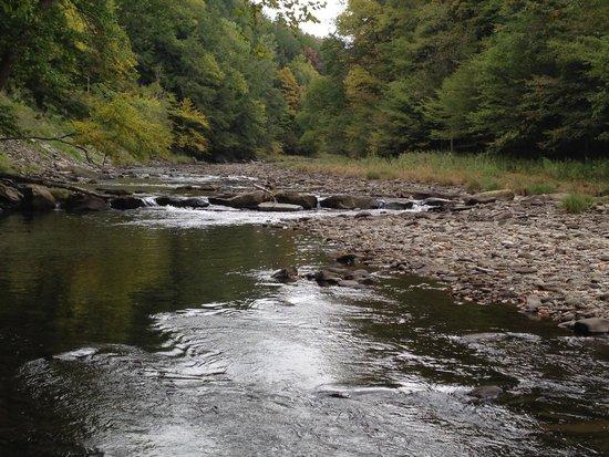 Beaverkill Valley Inn : Beaverkill River running along the inn's property