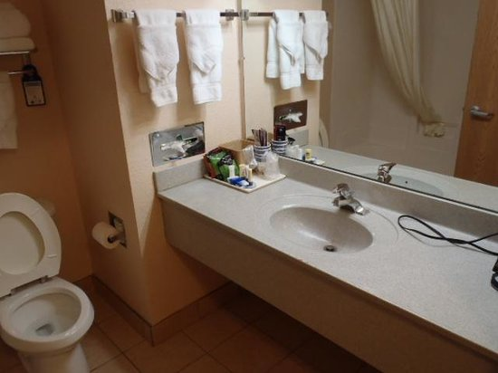 Bathroom vanity is inside bathroom, shower has extender bar ...