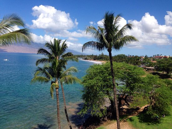 Kamaole Beach Park II: View from the condo