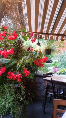 Hoffman House : The patio