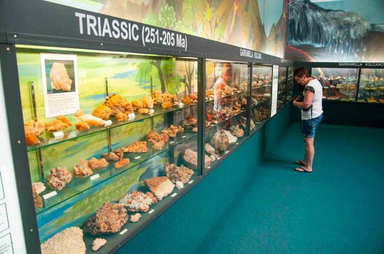 ‪Crystal Kingdom Fossil Museum‬