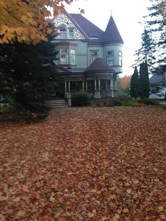 Estabrook House Bed and Breakfast: Maples in the front yard shed in early October