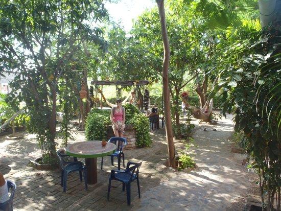 La Casa de Felipe: Jardin