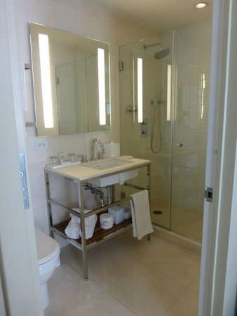 Cassa Hotel 45th Street New York: Nice Shower, no bathtub