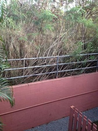 Kahana Falls: Nice view...this is what you are looking at in a 1BDRM/sleeps 2.