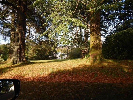 Spean Lodge: Grundstück