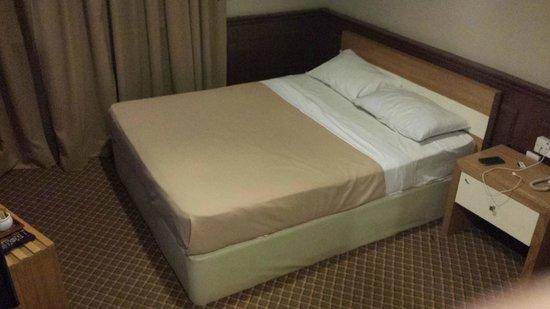 Golden Nasmir Hotel