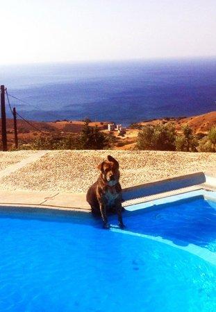 Agia Paraskevi, กรีซ: swimming pool