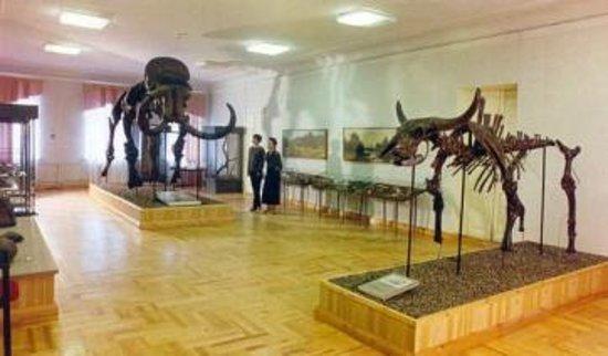 Borisoglebsk, Rússia: Краеведческий музей